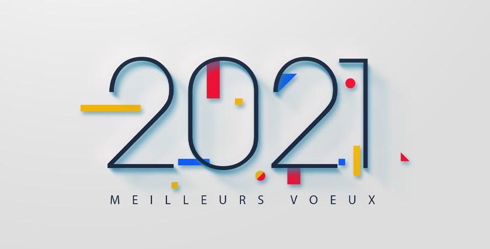 Voeux 2021 du CESECE Guyane