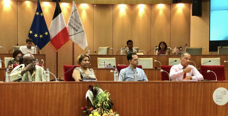 Plénière du CESECE Guyane